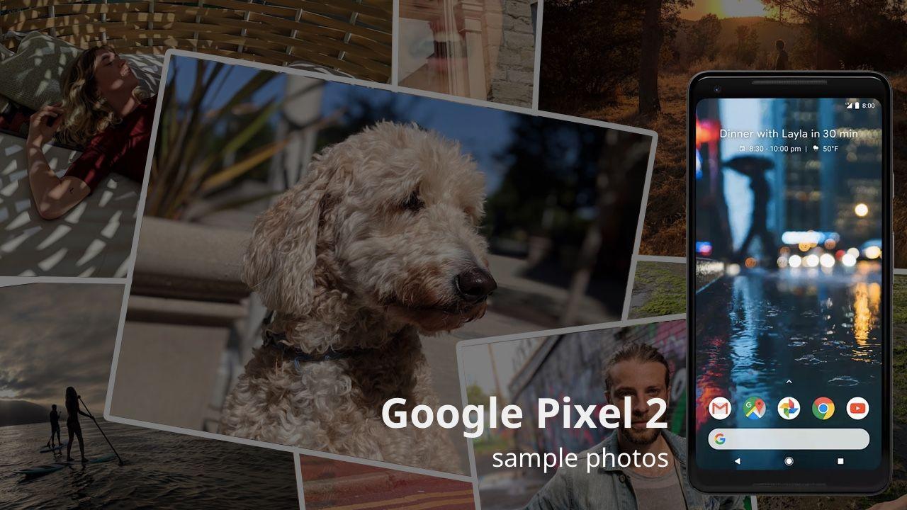 Google Pixel 2 Offical Sample Photos